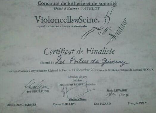 diplome-violoncelle-en-seine